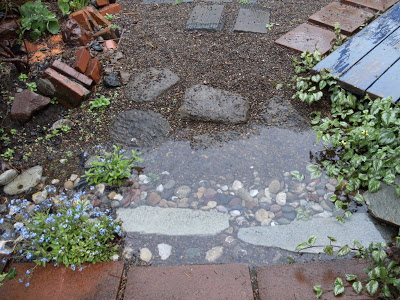 It Works–the Rain Garden